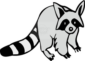 Raccoon clipart Clip images Free art clipart