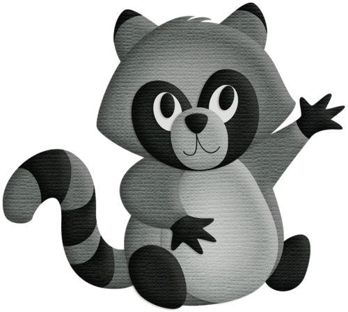 Raccoon clipart woodland CLIP ANIMALS best FOREST 581