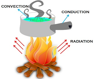Wilderness clipart conduction  Conduction Difference Between conduction