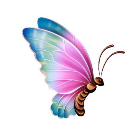 Turquoise clipart beautiful butterfly #4