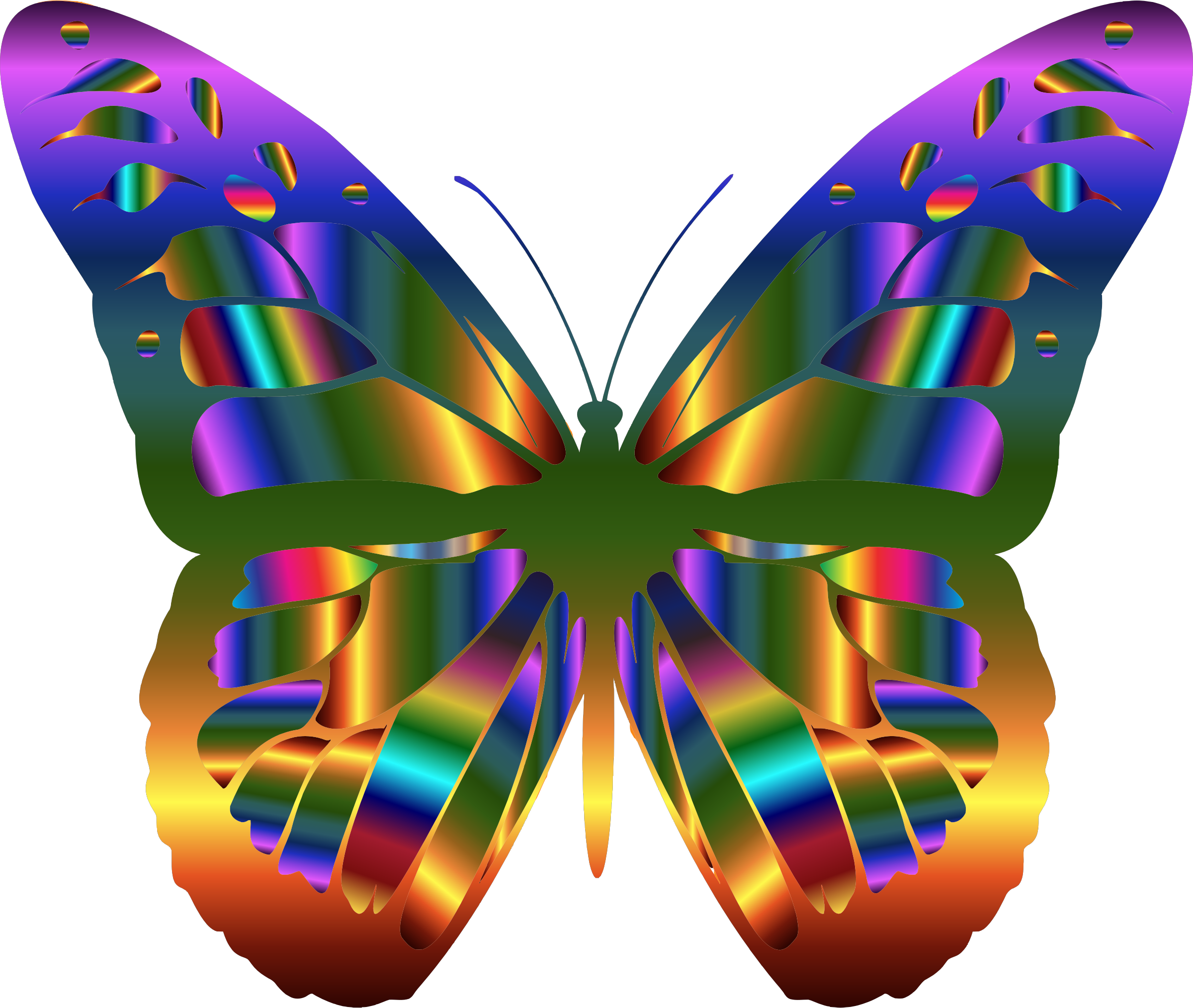 Monarch Butterfly clipart symmetrical #6