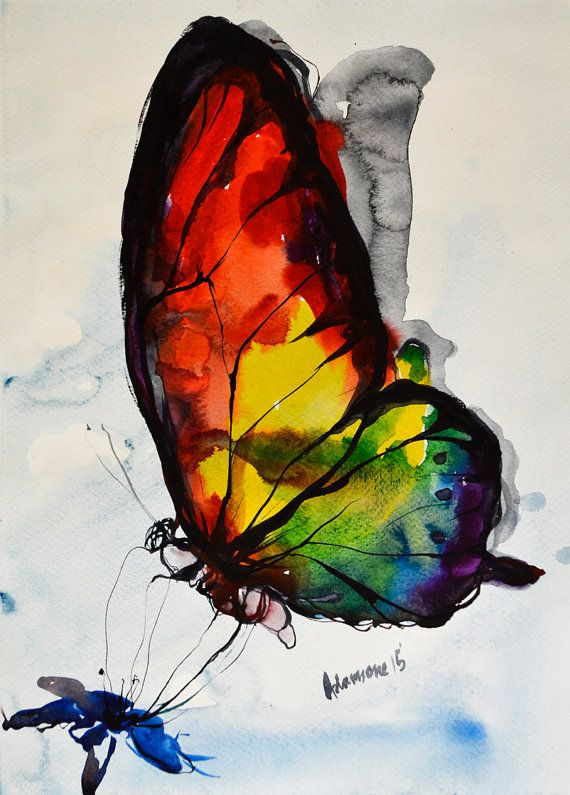 Drawn butterfly rainbow Butterfly Pinterest watercolor on by