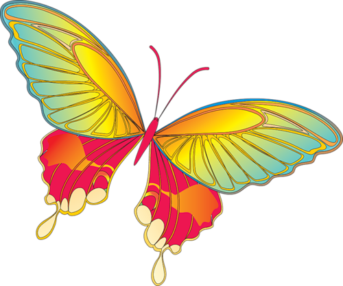 Gallery clipart yellow butterfly Projects Cartoon IMAGES  Cartoon