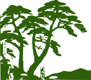 Rainforest clipart Vector Art  Edit Clip