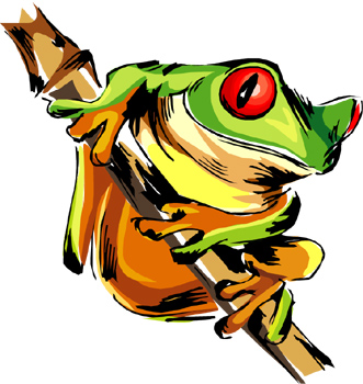 Tree Frog clipart rainforest animal #6