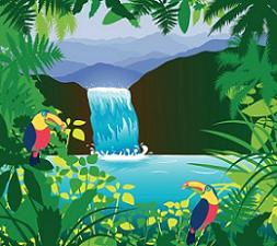 Rainforest clipart Clipart Rainforest Rainforest Free