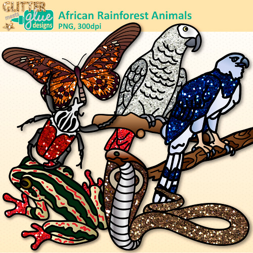 Parrot clipart rainforest frog Eagle African frog Art parrot