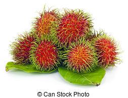 Rambutan clipart Tropical white on on fruit