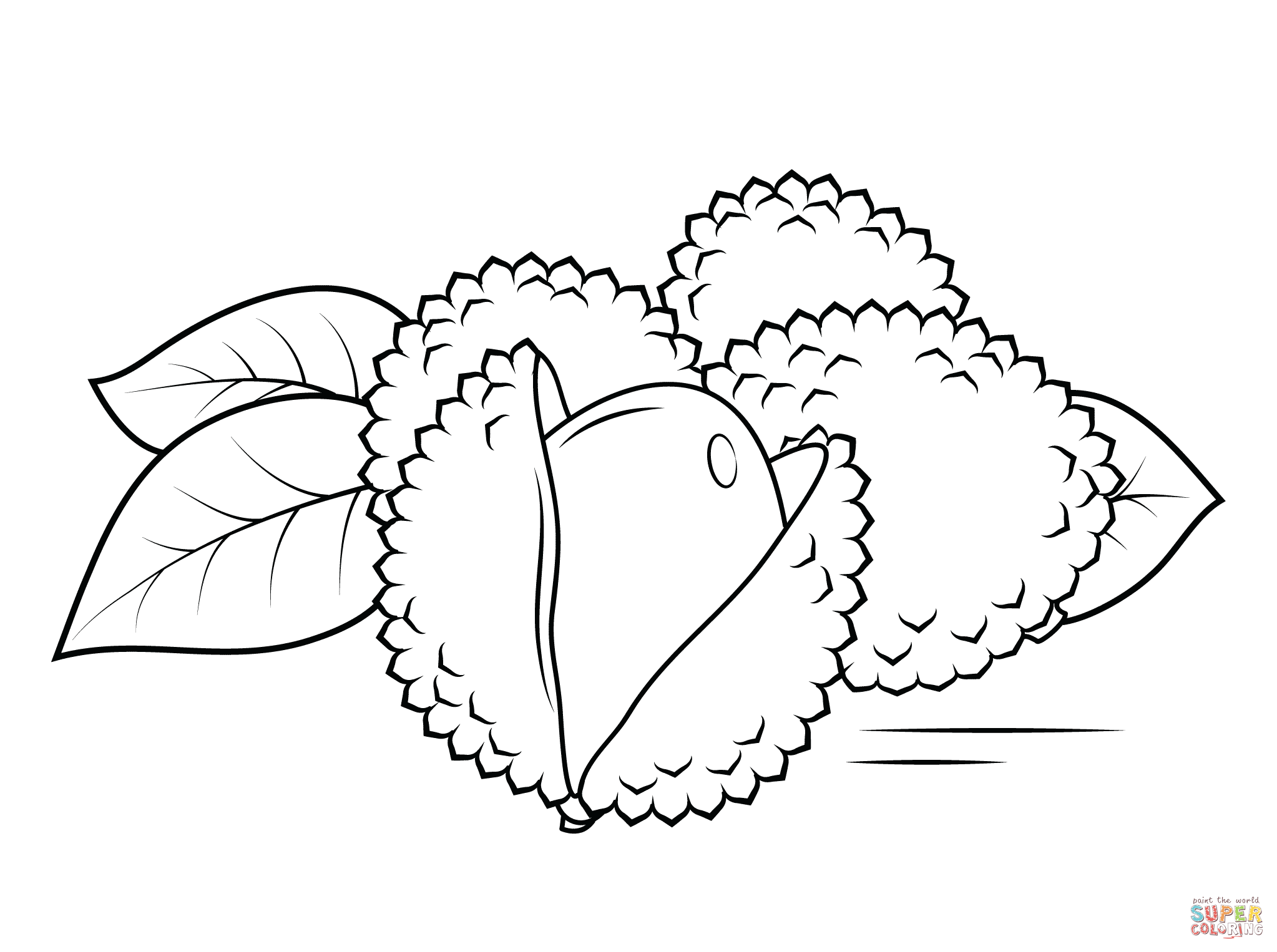 Lychee clipart Color Free Lechees page (compatible