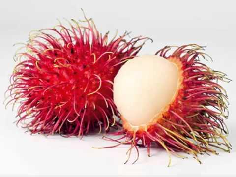 Rambutan clipart friuts Nutrition Fruit Lychee Gallery Vs