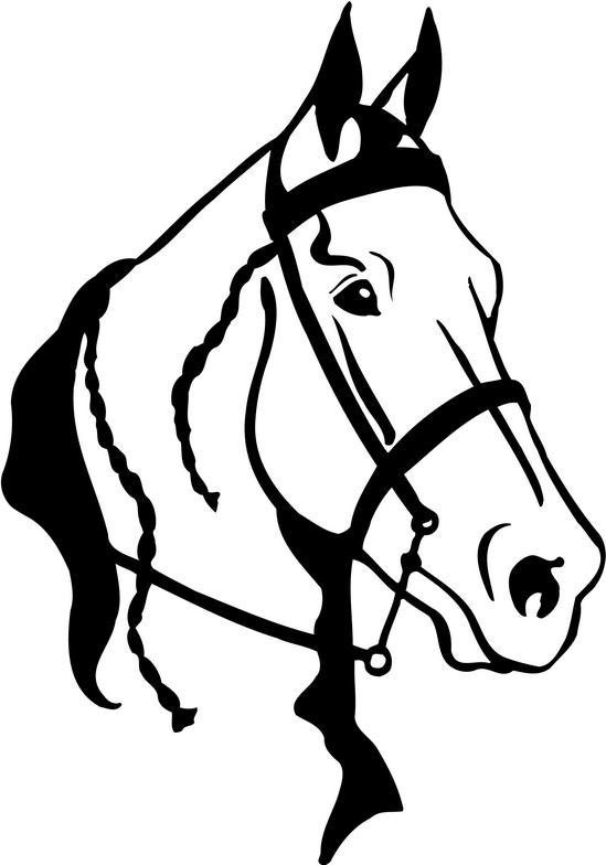 Head clipart quarter horse Ranch Images Free Clipart Clipart