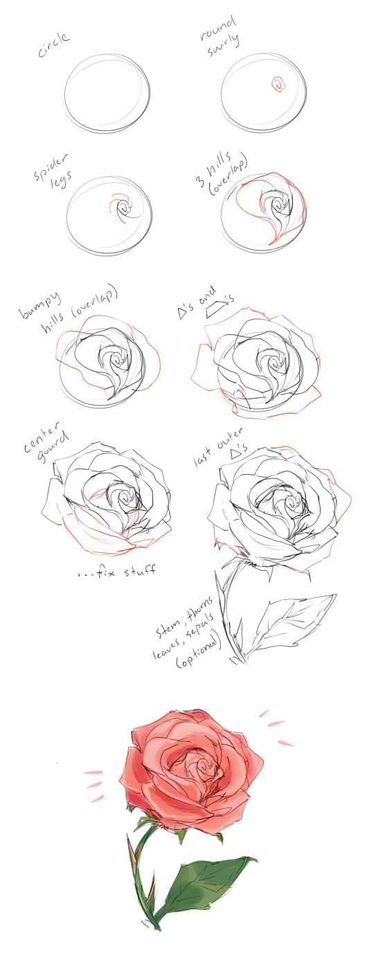 Drawn rose perfect rose Floral draw list Floral tumblr: