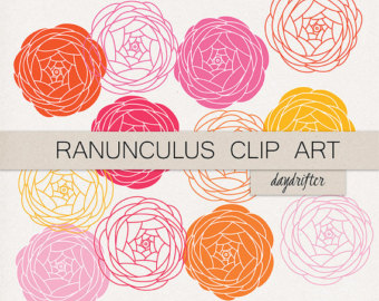 Ranuncula clipart bouquet Digital Printable Instant Download clipart