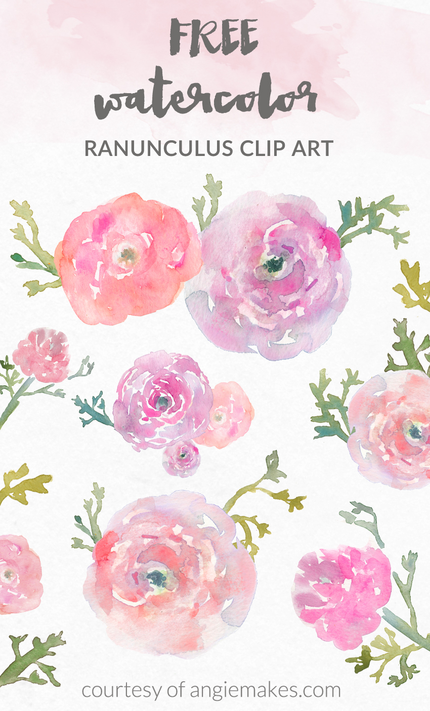 Ranuncula clipart Flower Clip Angie Flower Clip