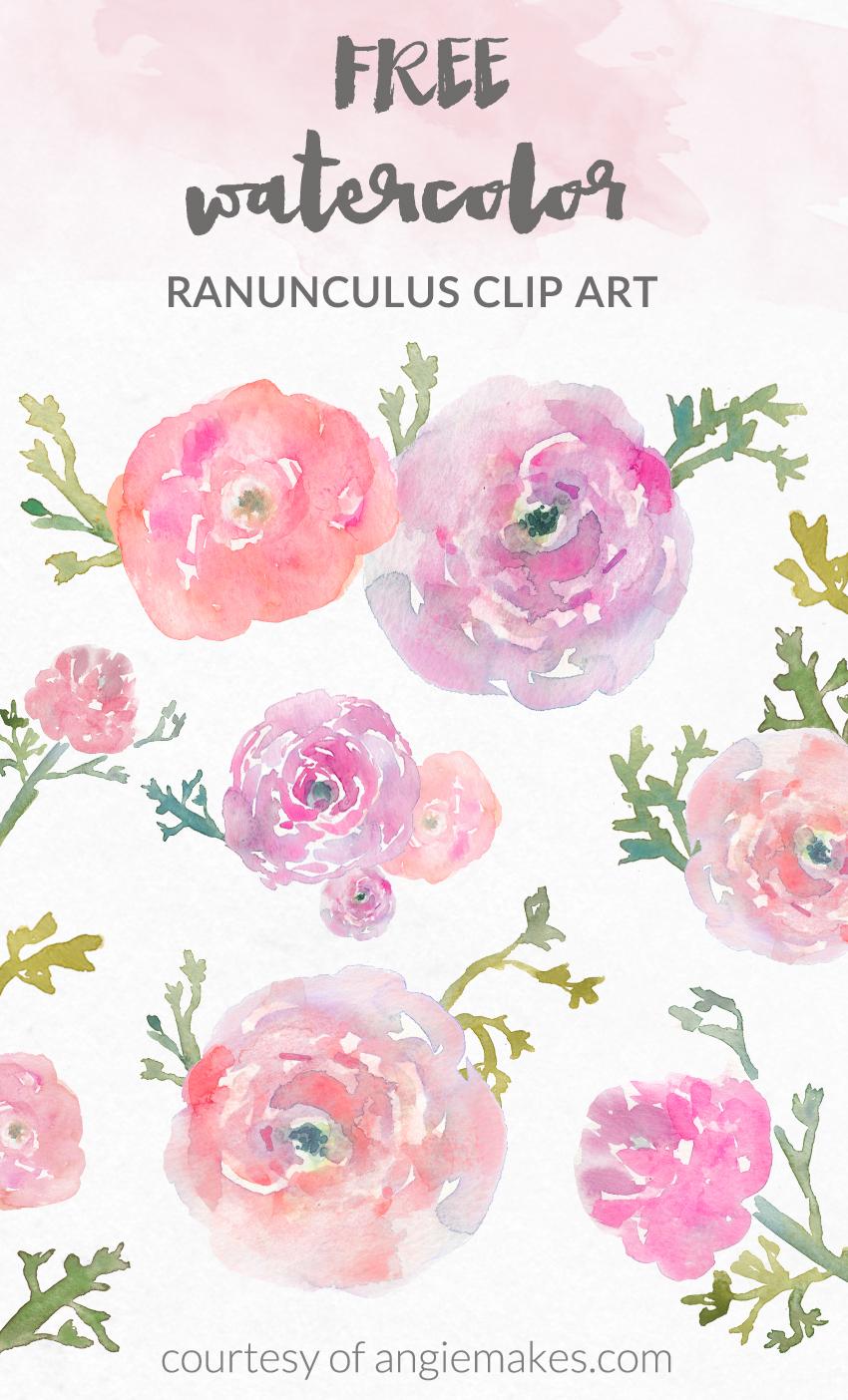 Floral clipart ranunculus Watercolor Flower Angie Clip Art