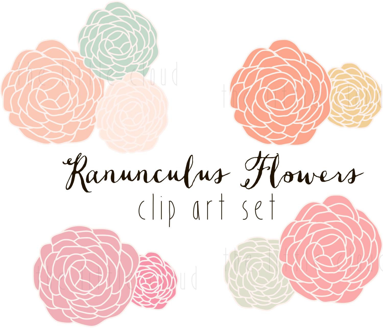 Ranuncula clipart Clip Art wedding and floral