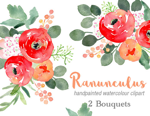 Ranuncula clipart bouquet Bouquets Two Two Watercolour Ranunculus