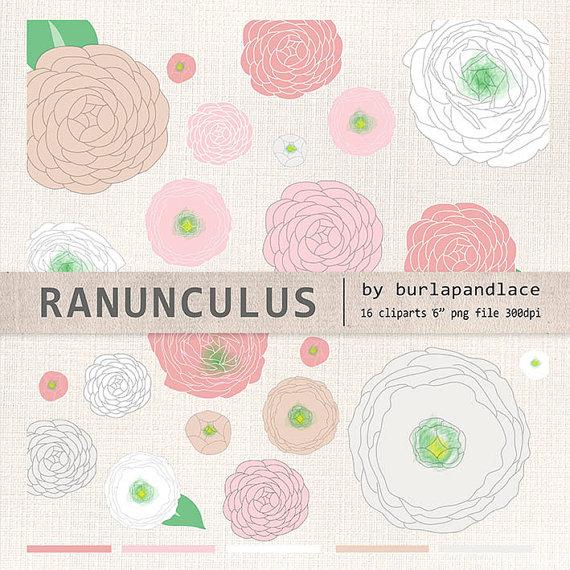Ranuncula clipart coral flower Flower $4 ranunculus flower flower