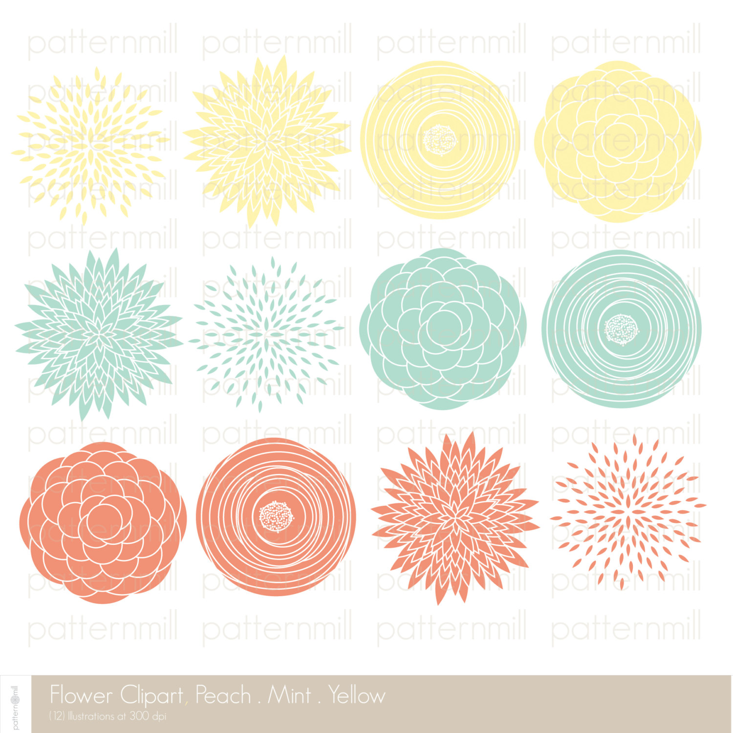 Ranuncula clipart coral flower Flowers Flowers art Colored coral