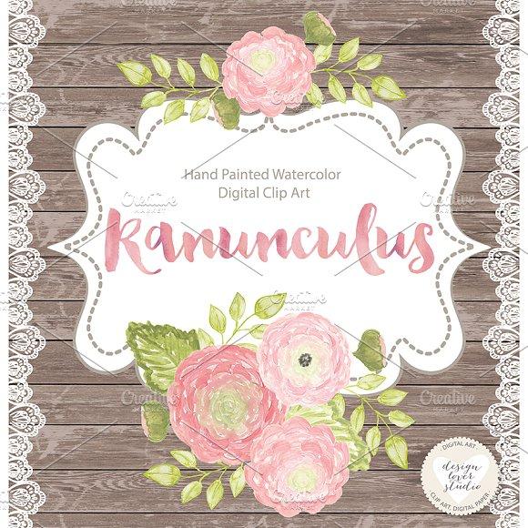 Ranuncula clipart coral flower ~ on Market ranunculus Illustrations