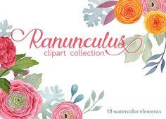 Ranuncula clipart digital Green clipart spring florals Digital