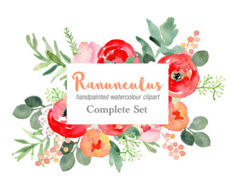 Ranuncula clipart flower leaves Clipart with Watercolour Floral bouquets