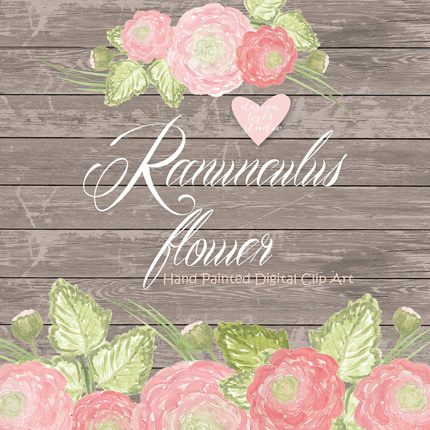 Ranuncula clipart flower leaves Watercolor is This flower Pink