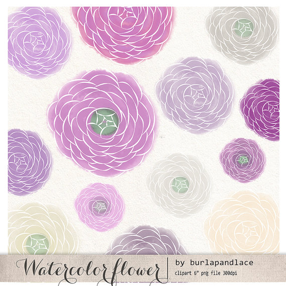Ranuncula clipart grey flower Cliparts clipart flower clipart draw