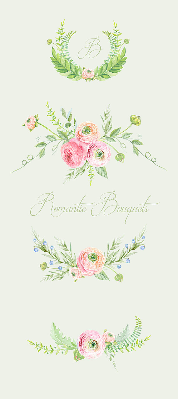 Ranuncula clipart hand drawn flower Watercolor Art Bouquets Drawn для