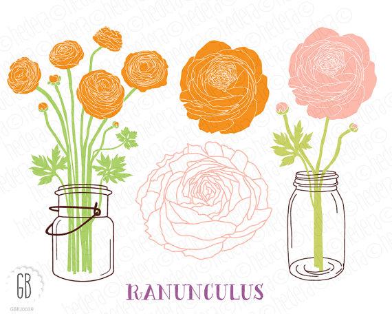 Ranuncula clipart mason jar flower Art date Mason ranunculus wedding
