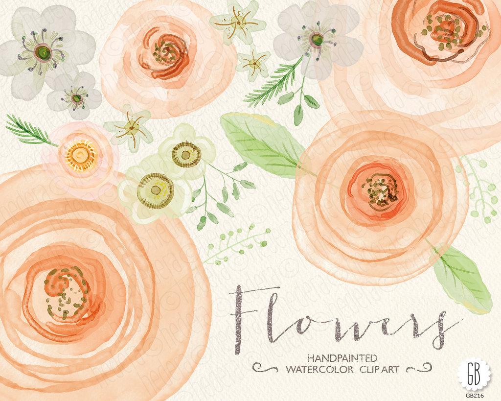 Ranuncula clipart mint flower Roses rose peach Peach wedding