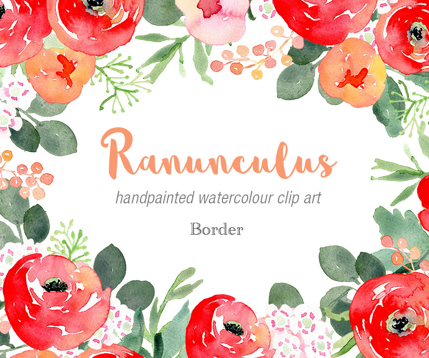 Ranuncula clipart modern flower A Clipart Watercolour digital Elements