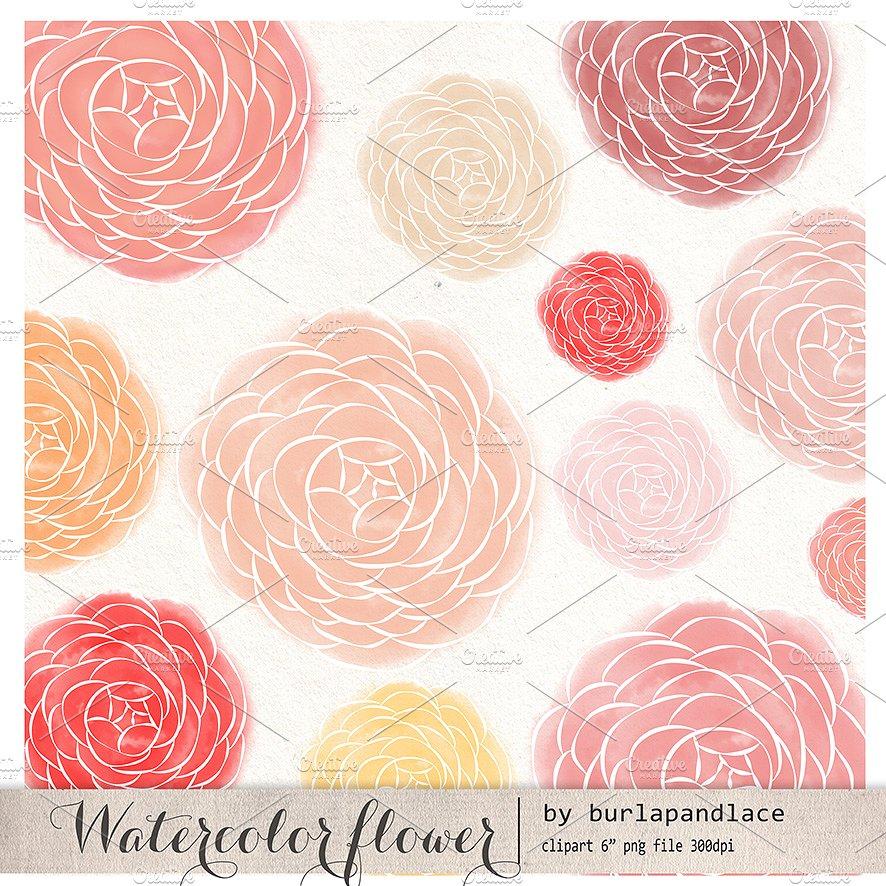 Ranuncula clipart pastel flower Ranunculus flower Market watercolor on