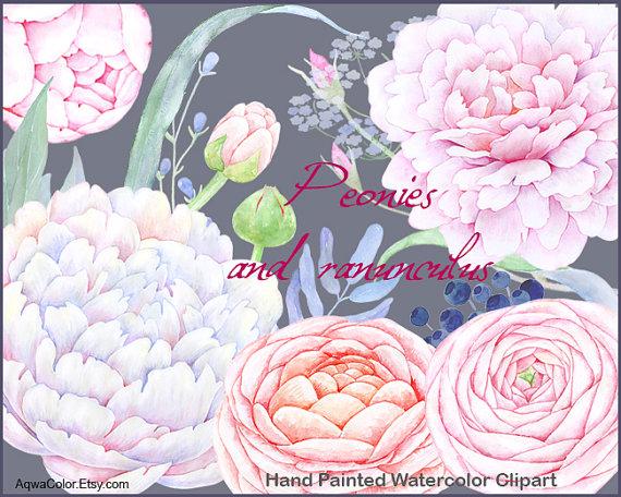 Ranuncula clipart pastel flower Watercolor flowers  clipart ranunculus