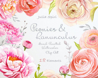 Ranuncula clipart peach flower Invitation Wedding Painted Watercolor Peonies