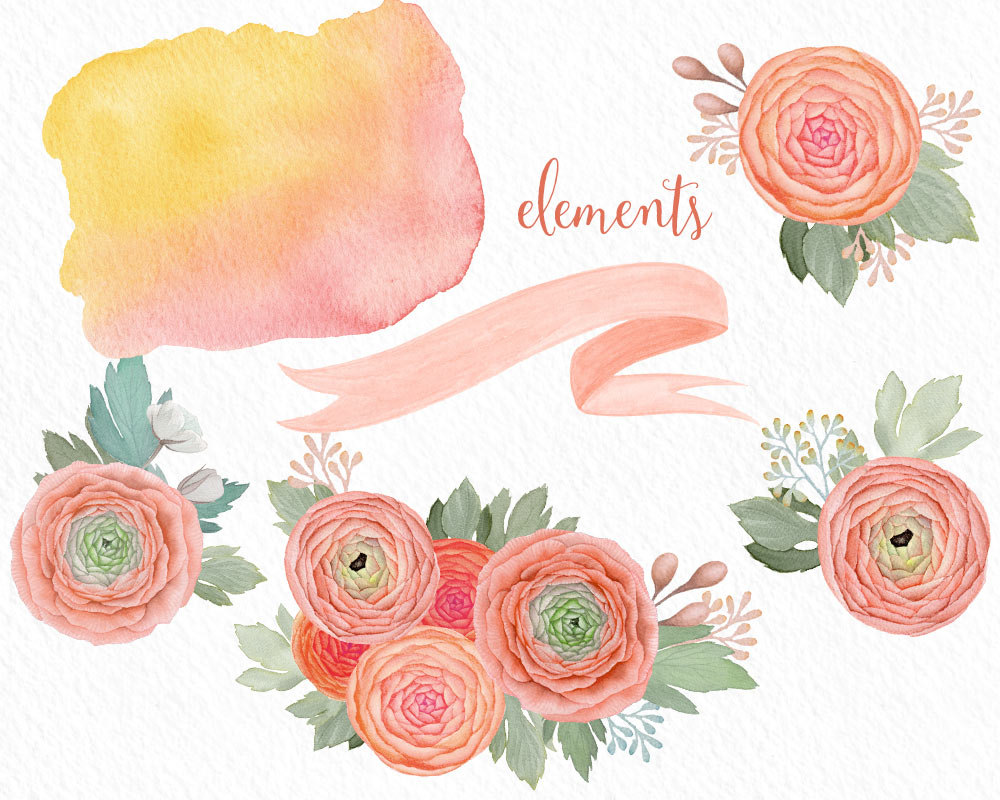 Ranuncula clipart peach flower Flowers Peach wedding This digital
