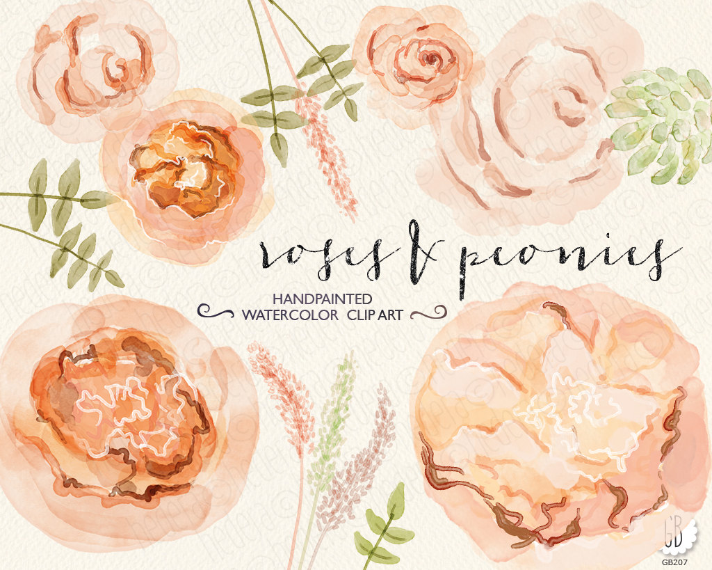 Ranuncula clipart peach flower Etsy anemones painted wedding Watercolor
