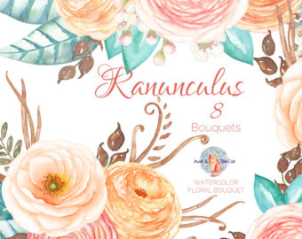 Ranuncula clipart peach flower Etsy Floral Painted flower Watercolor