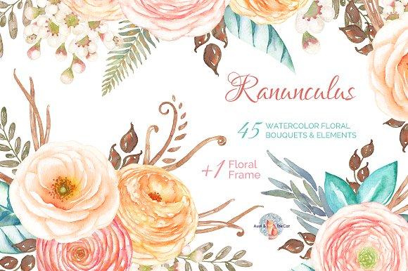 Ranuncula clipart watercolor flower Watercolor Ranunculus Market on Ranunculus