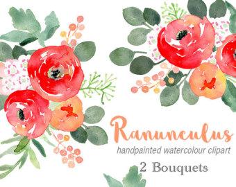 Ranuncula clipart watercolor flower Flowers Watercolour Ranunculus Clip Bouquets