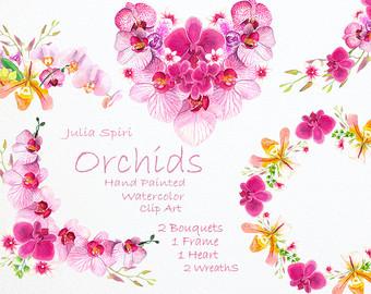 Ranuncula clipart watercolor flower Frames Watercolor Floral Watercolor Hand