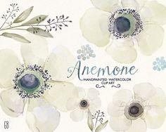 Ranuncula clipart watercolor flower Anemone bemalte Watercolor clip diy