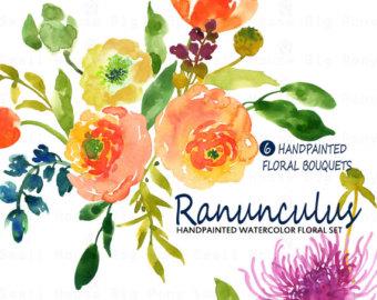 Ranuncula clipart watercolour flower Clipart Floral elements clipart diy