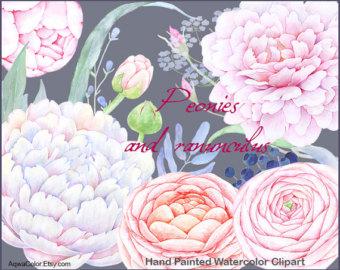 Ranuncula clipart watercolour flower Peonies clipart flowers white Wedding