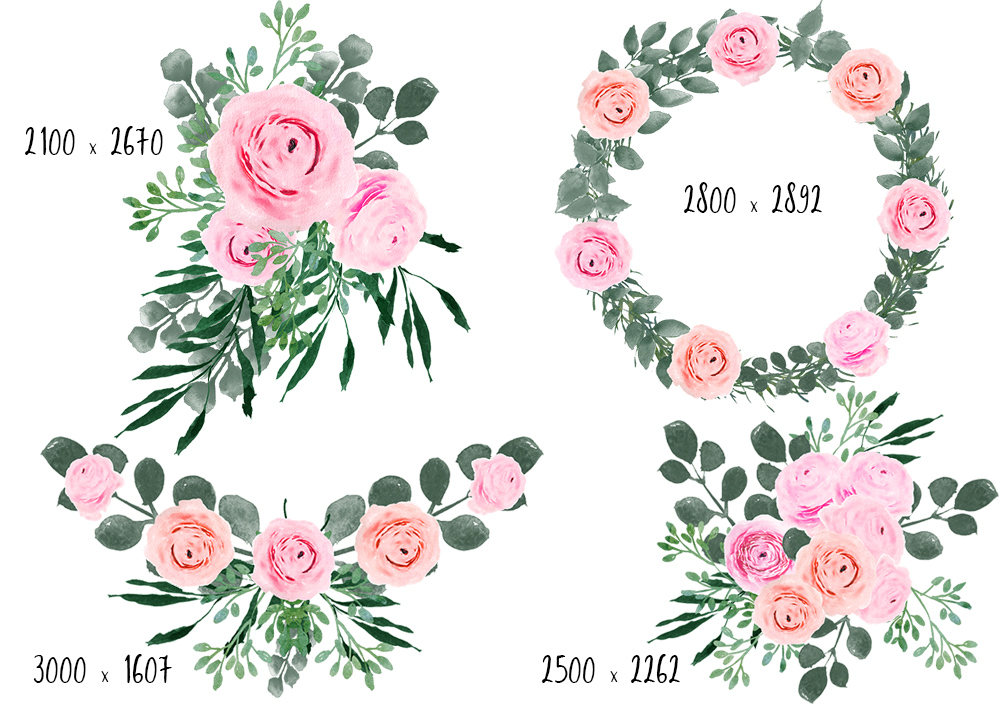 Ranuncula clipart wedding floral #9
