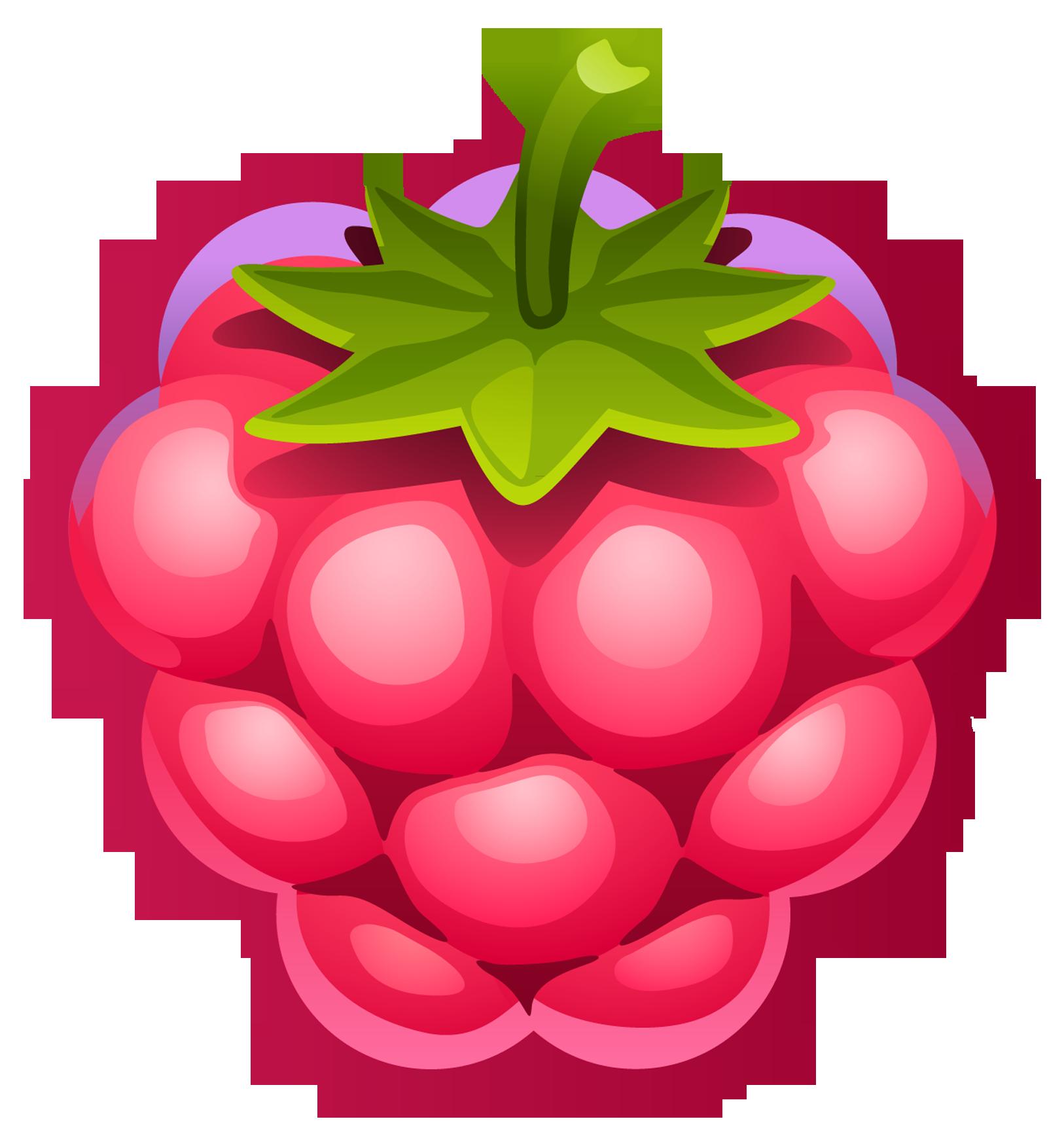 Rapsberry clipart Photo  Raspberry Fruit art