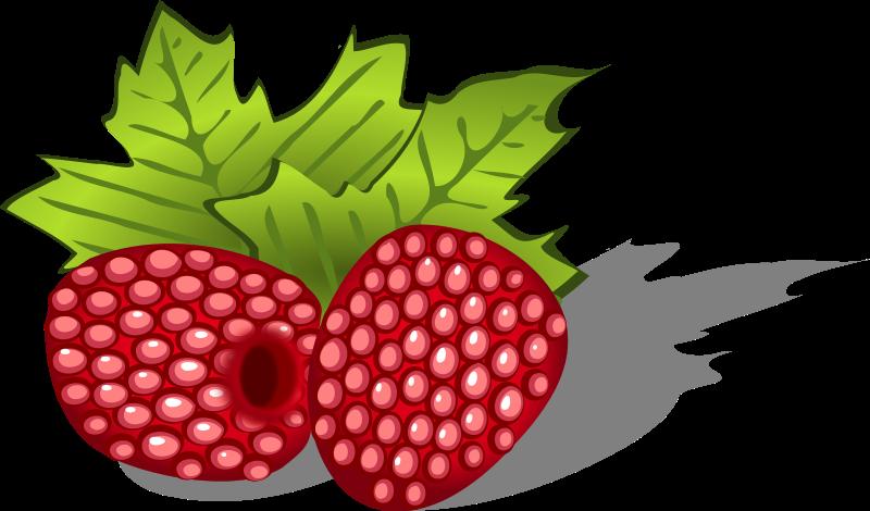 Rapsberry clipart Raspberries Public Clip Use Domain
