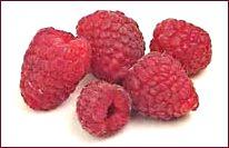 Rapsberry clipart Red Raspberry Free Clipart raspberries