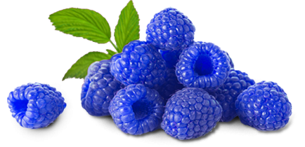 Berry clipart blue raspberry  Blue Raspberry