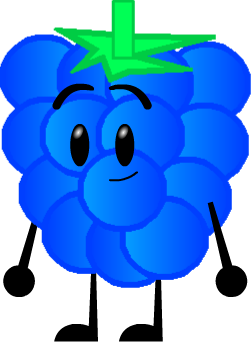 Rapsberry clipart blue raspberry Shows Community (TBFDIWP) png